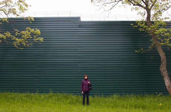 Высокий забор не позволит нормально развиваться растениям