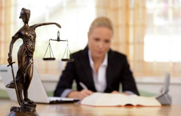 Свидетелями не могут быть адвокаты, правозащитники и проч.