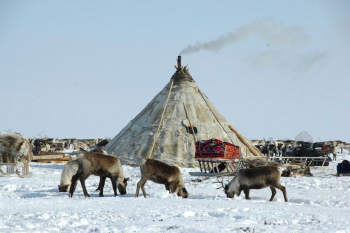 Народы Севера освобождены от уплаты земельного налога