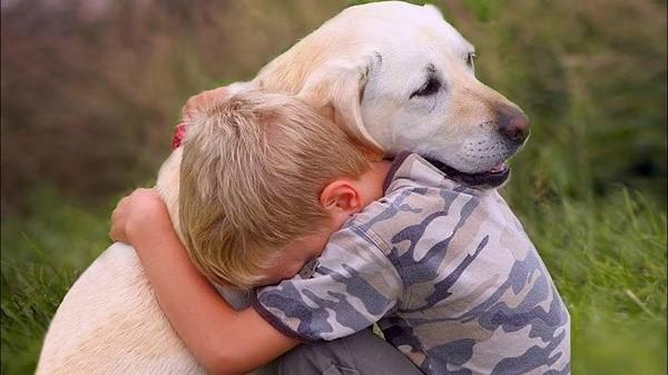 «Общество, которое плохо относится к животным, всегда будет нищим и преступным». – Л. Толстой