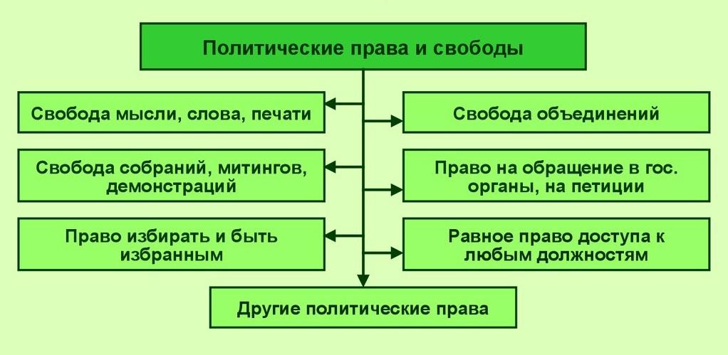 Политические права гражданина согласно конституции РФ