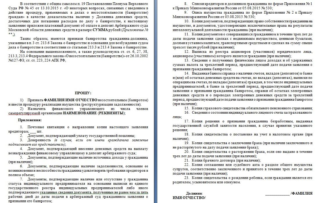 Образец заявления о банкротстве гражданина, страницы 5, 6
