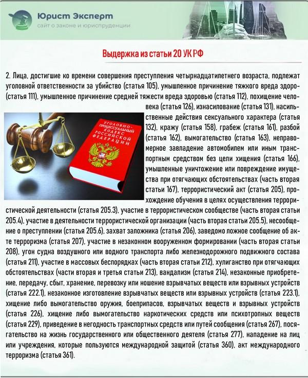 Выдержка из статьи 20 УК РФ