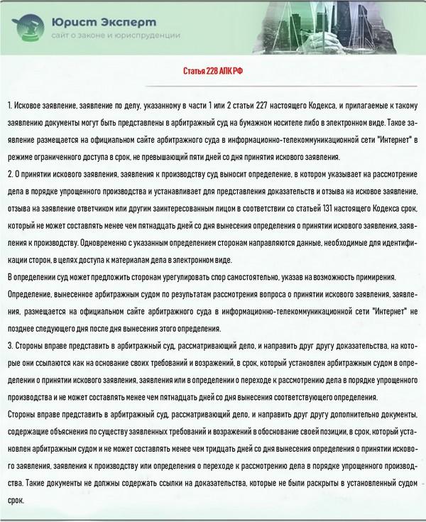 Статья 228 АПК РФ