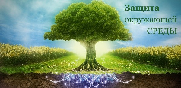 Закон об окружающей среде