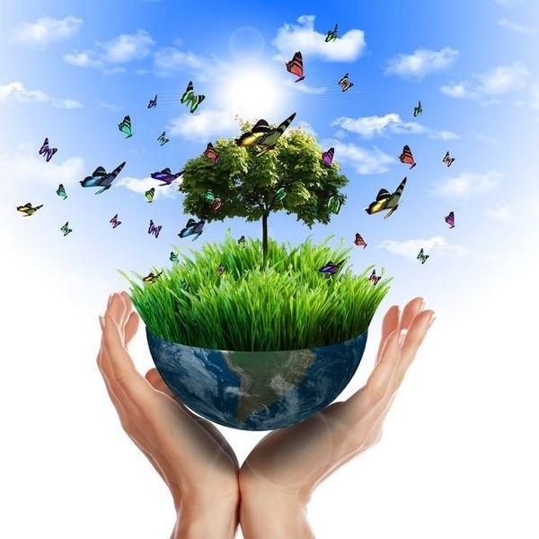 Поскольку обстоятельства процесса природопользования меняются каждый день, необходимо менять также и положения закона, подстраивая их под актуальное положение дел
