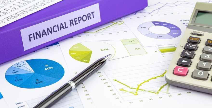 В первой части заключения аудитор дает характеристику финансовых отчетов, предоставленных организацией