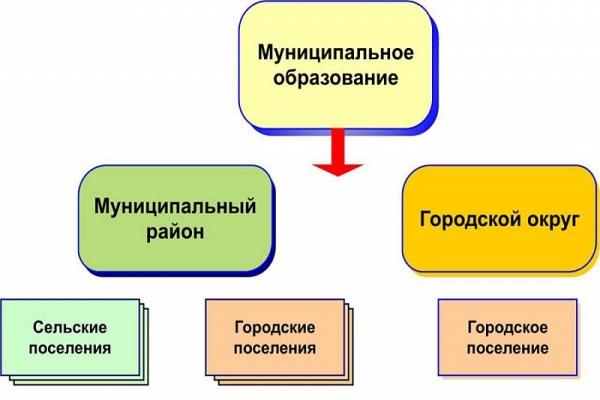 Структура органов самоуправления